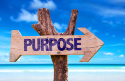 Purpose | Tami McVay - Wellness & Lifestyle Coach