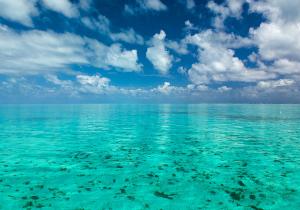 Belize Water | Tami McVay - Wellness & Lifestyle Coach